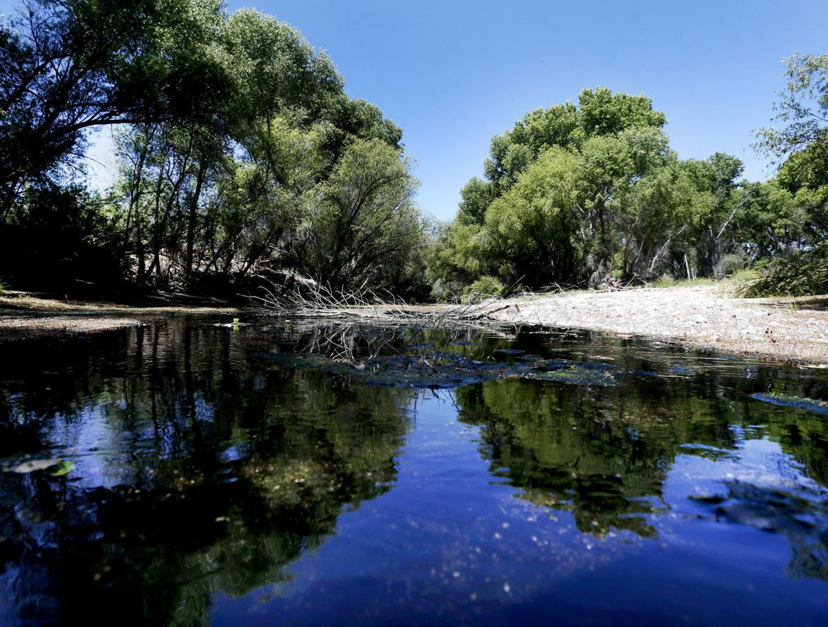 San Pedro River
