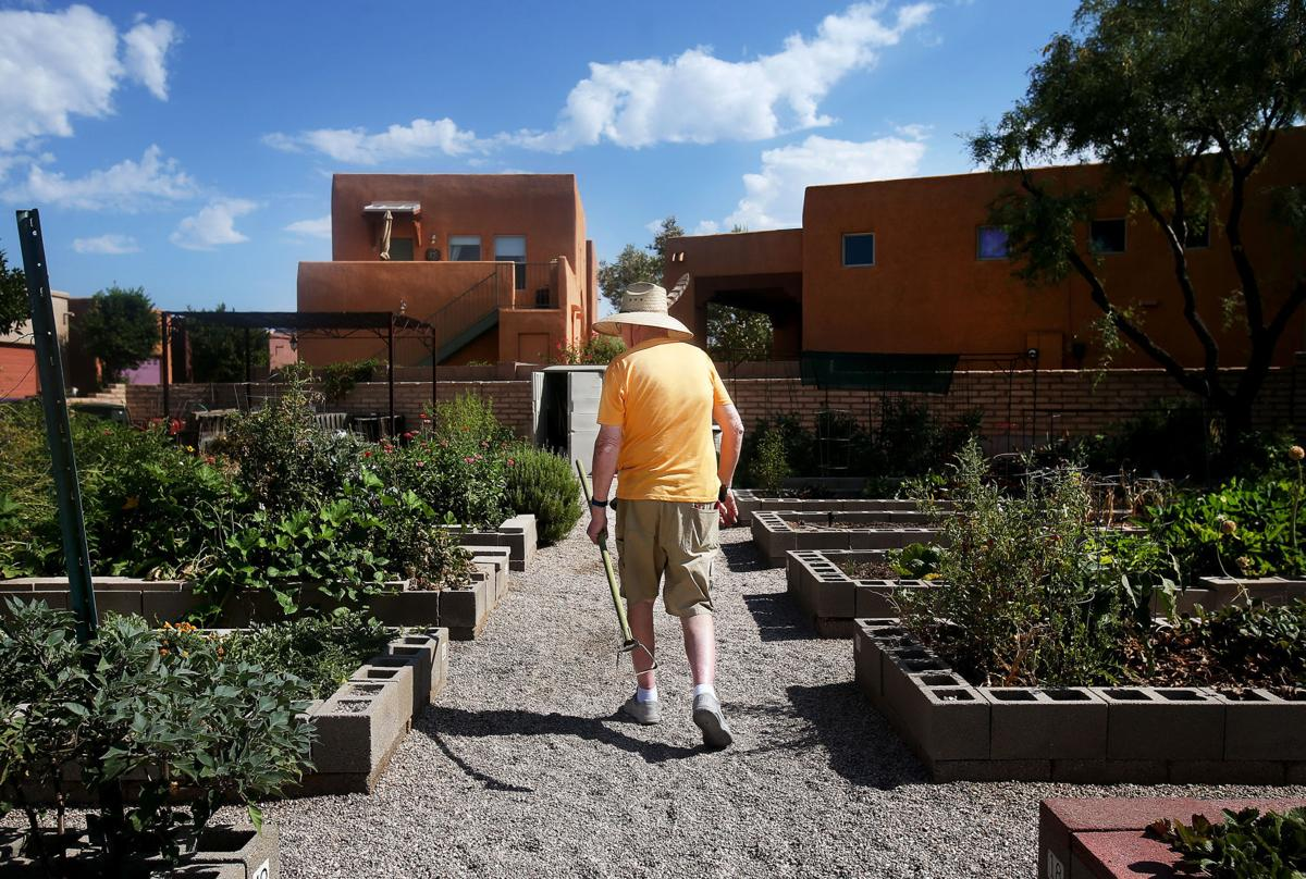 Starting A Community Garden How These Tucson