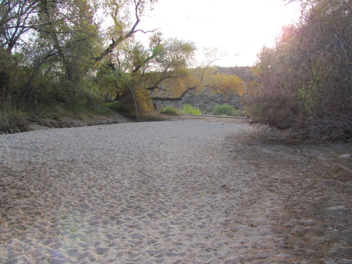 Sabino Lake bone dry