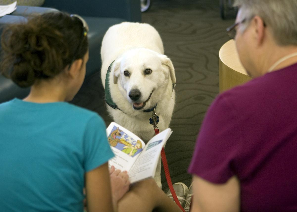 100 days of summer July 9-15 read to dogs