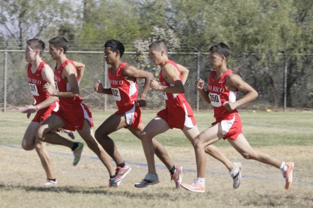 HIgh school boys cross country sectionals: Salpointe's Trouard clocks record mark