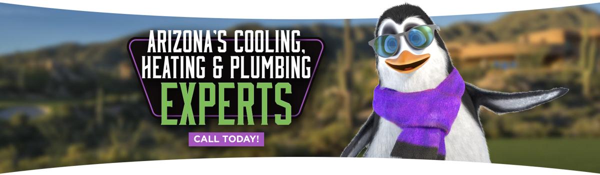 penguin air (Sponsored)