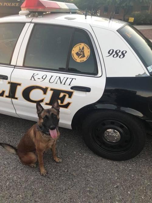 Tucson police dog