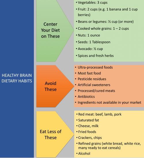 Brain-health-diagram.png