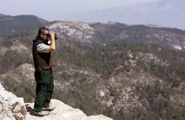 Sabino, Mount Lemmon included in forest closing