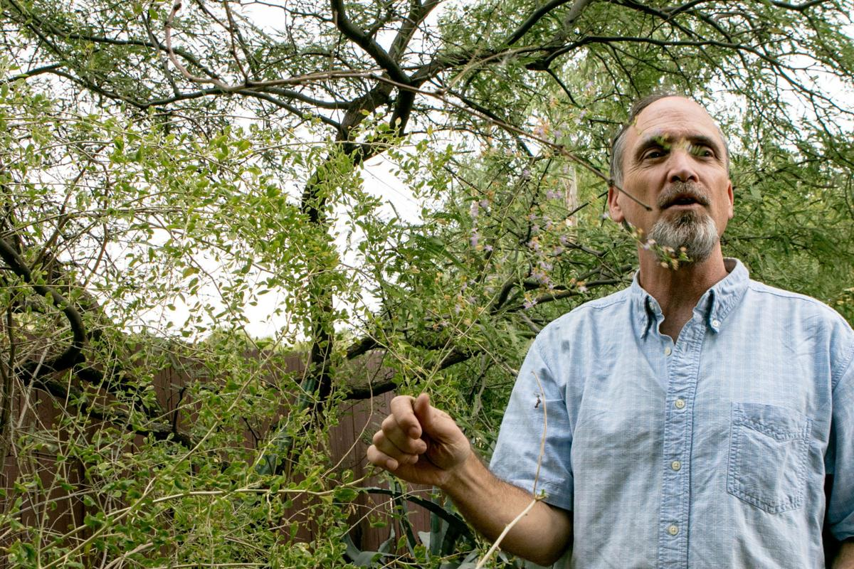 Exploring Food Forests In Tucson Home Garden