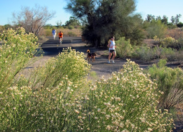 Rillito River Park Trail