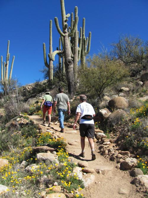 Catalina State Park hikers
