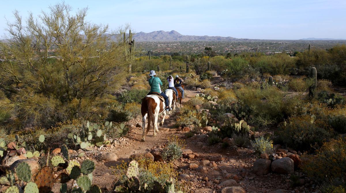 Linda Vista Trail rides