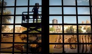 MOCA preps for large-scale multimedia artwork