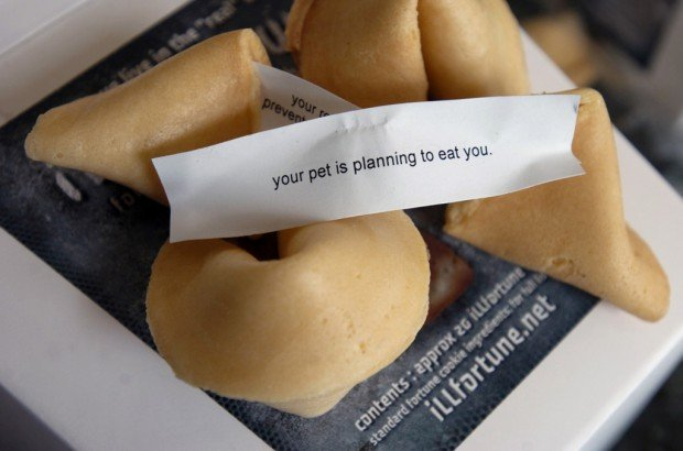 Crack irreverent fortune cookies for April Fools Day