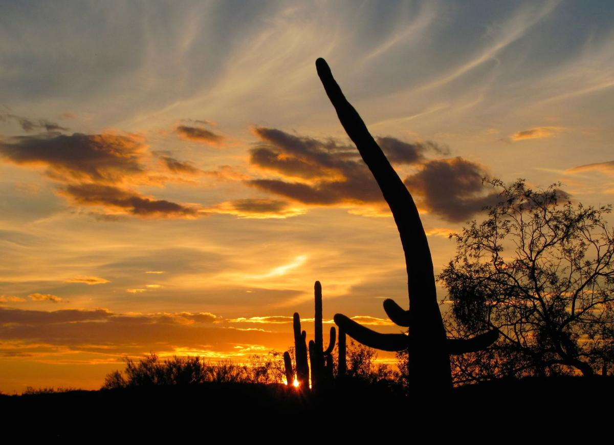 Sabino sunset