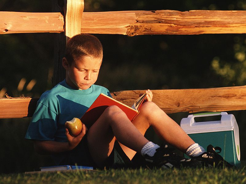 'Groundbreaking' Research Offers Clues to Cause of Dyslexia