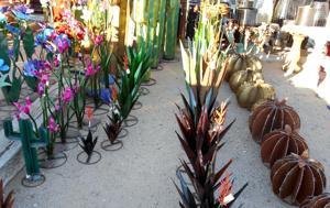 lawn art saguaro, agava, barrel cactus and prickly pear.JPG