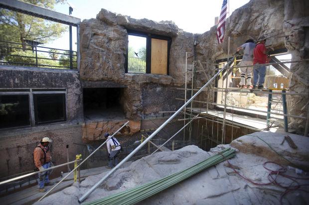 Up to 3 Alaska brown bears will call Reid Park Zoo home