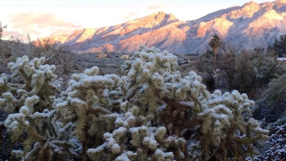 mount lemmon latino personals Read 29 tips and reviews from 1444 visitors about hiking, trails and windy point the catalina mountains are beautiful, and mt lemmon has great.