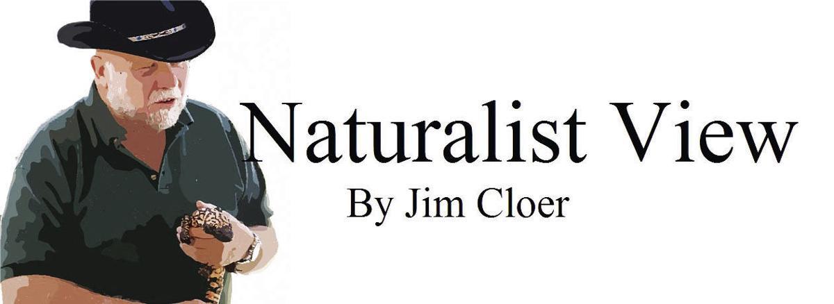 SBN-Logo-NATURALIST-VIEW.jpg