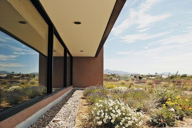 roof makes you green with envy foothills