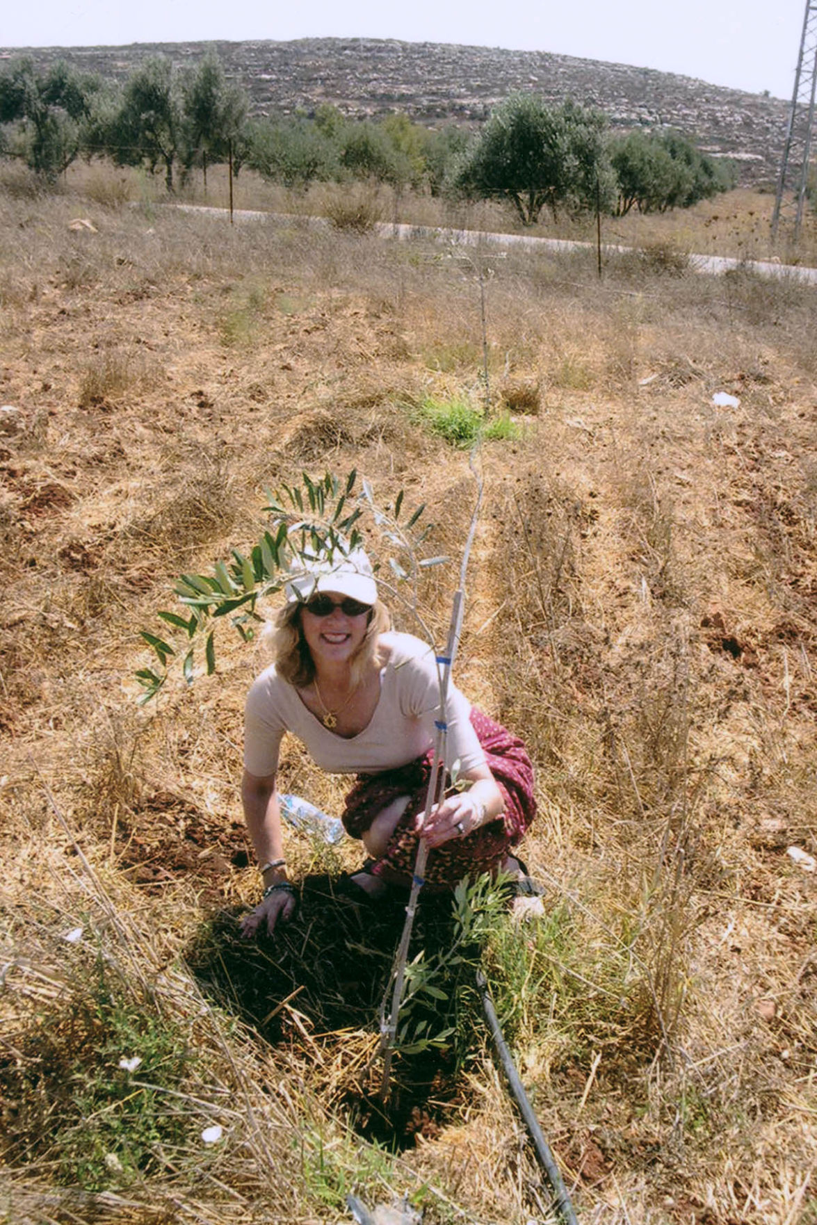 Late Woman S Dream Is Realized On Nonprofit Farm Tucson