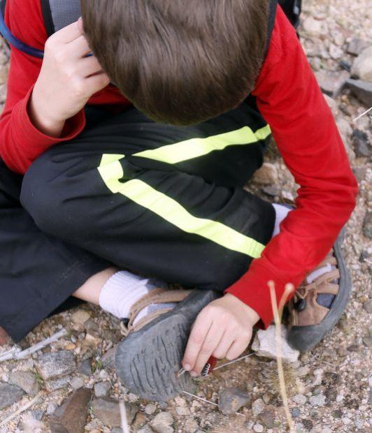 Wilderness Exploration Camp