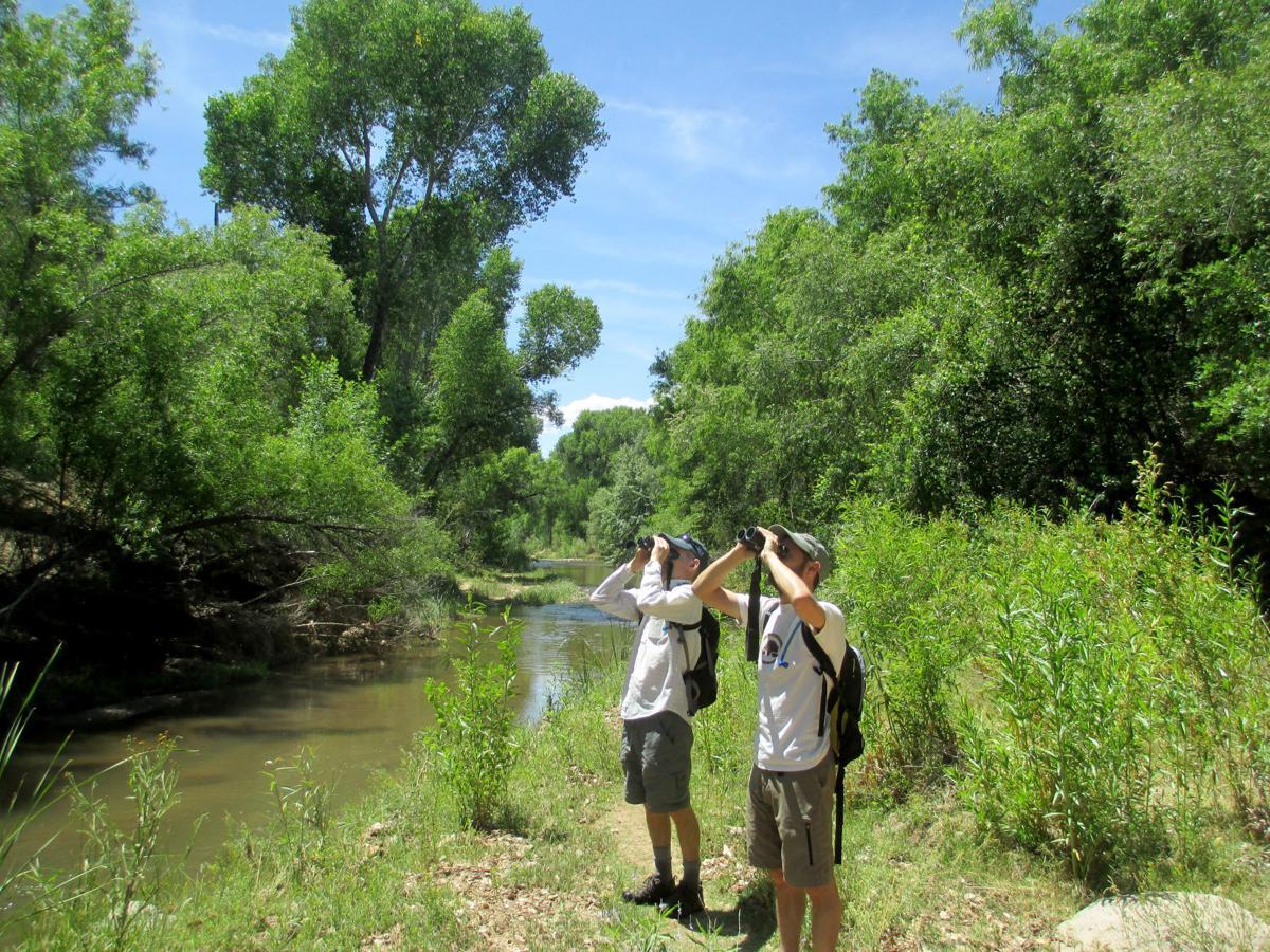 Tucson Audubon Society