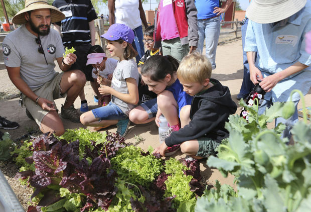 Tucson Village Farm teaches kids, families advantage of natural, healthy eating
