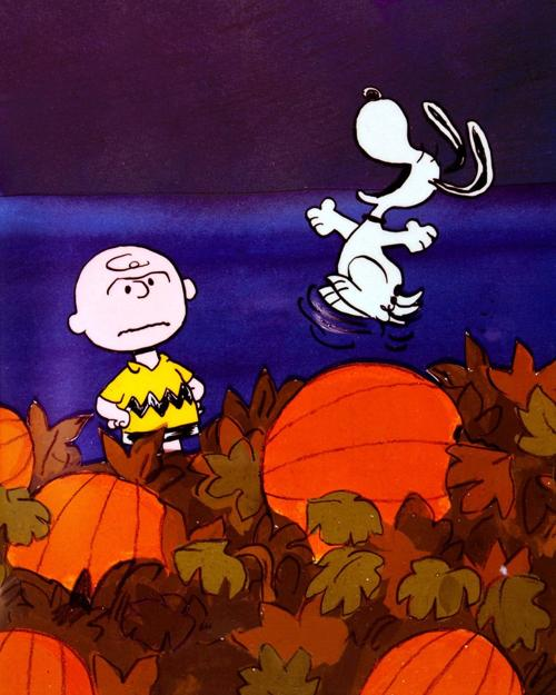 Autumn In Tucson: 'It's The Great Pumpkin, Charlie Brown
