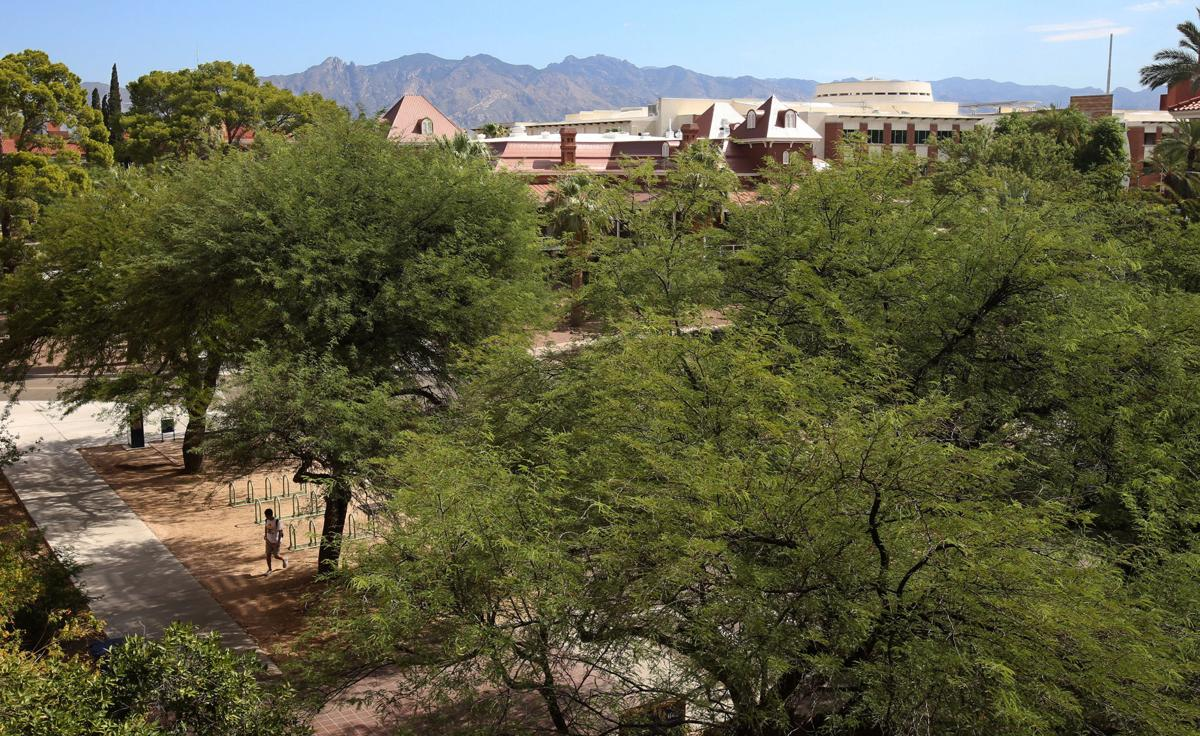 University of Arizona campus, 2016