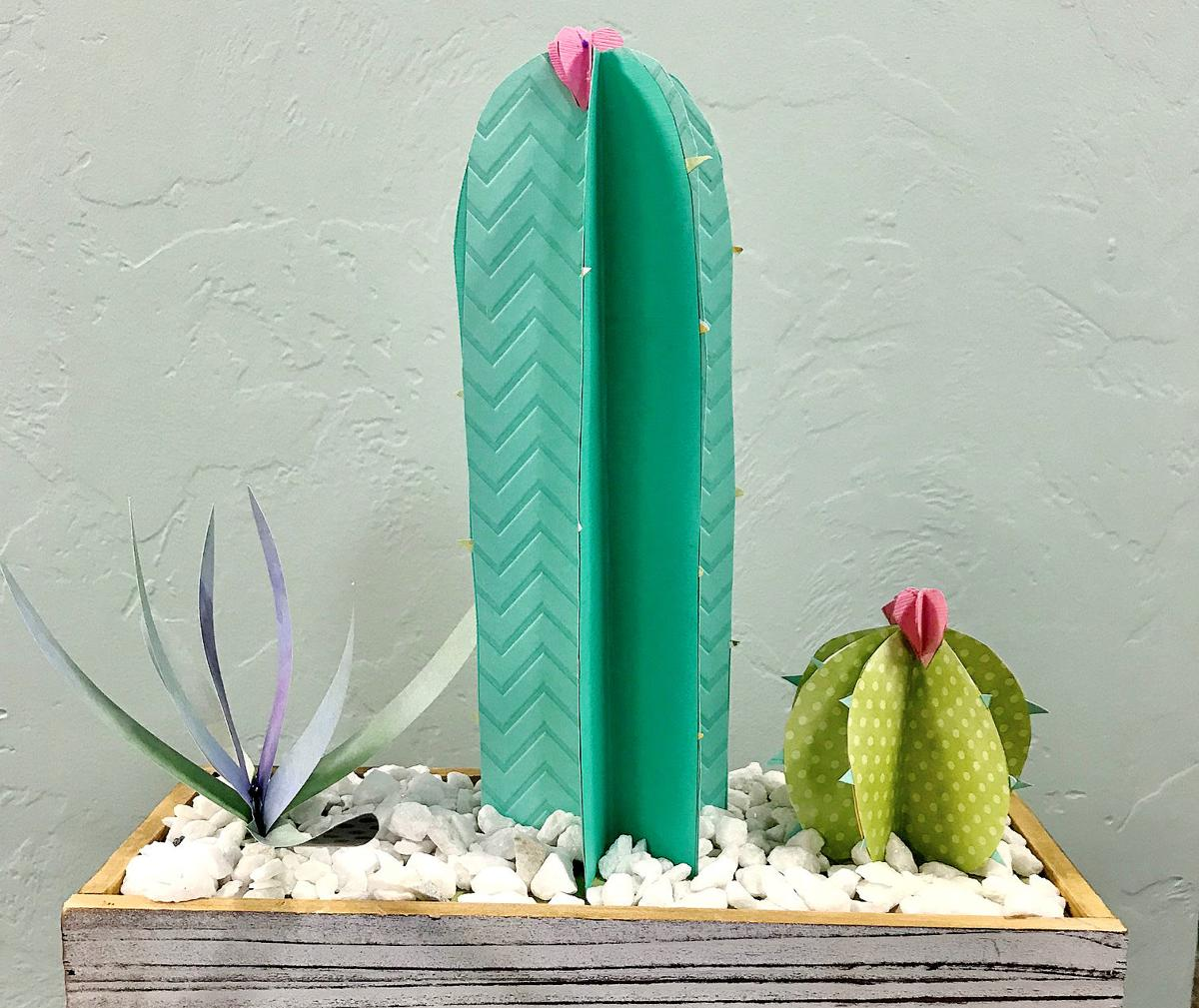 Cactus centerpiece
