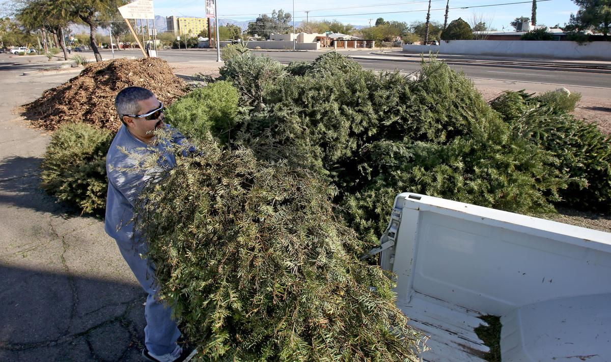 Christmas Tree Recycling Tucson 2020 Where to recycle your Christmas tree in Tucson | Local news
