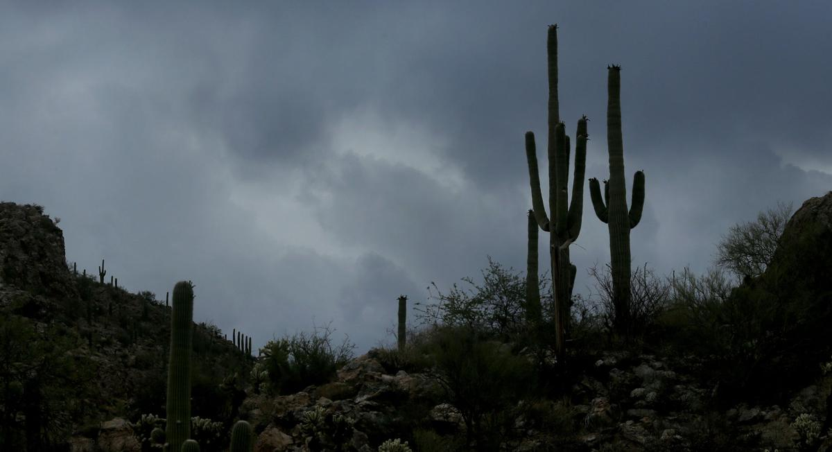 http://tucson.com/news/local/tucson-weather-cooler-temps-and-storm-activity-expected-this-weekend/article_e0030688-93d4-11e7-8612-3349c425c208.html