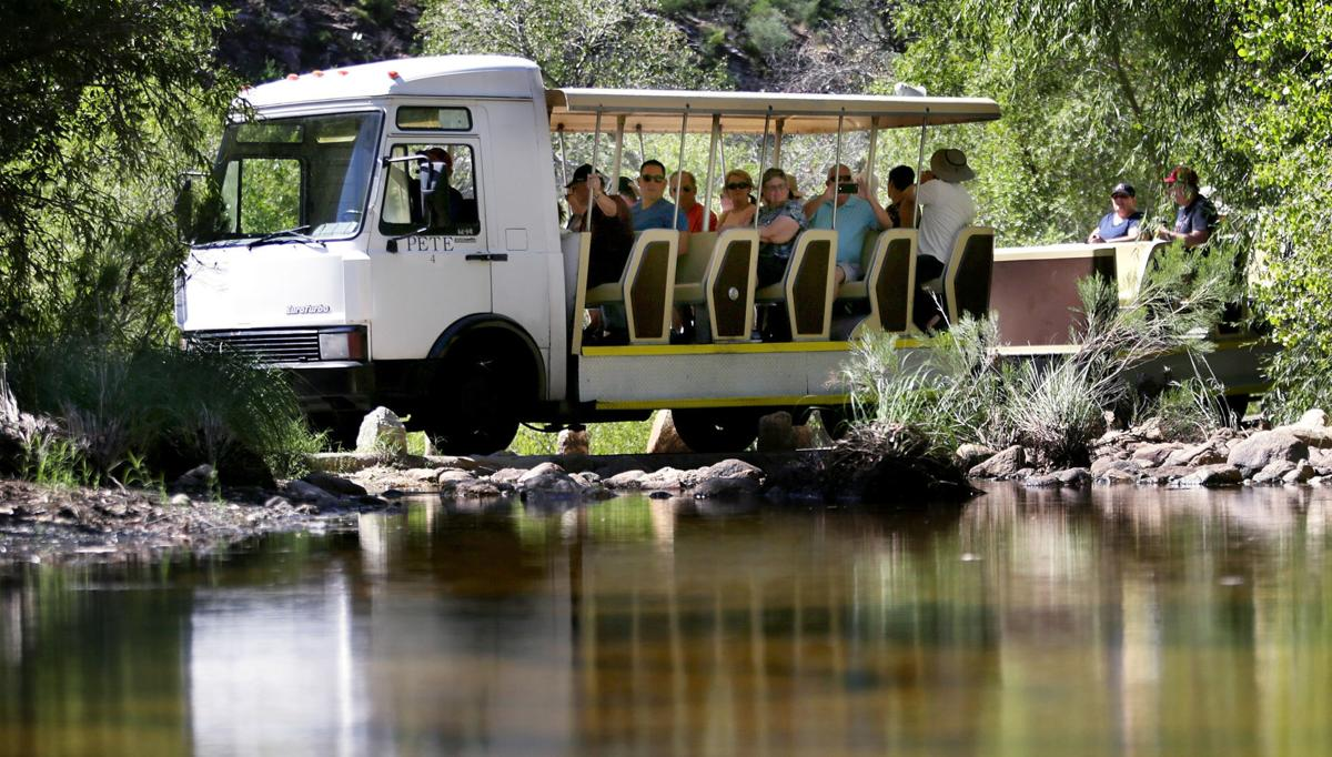 Sabino Canyon Tours tram