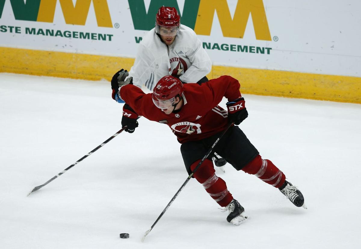Coyotes Hockey