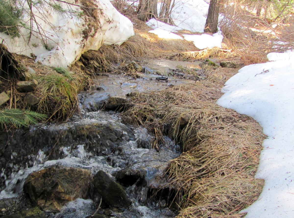 Stream flowing with snowmelt