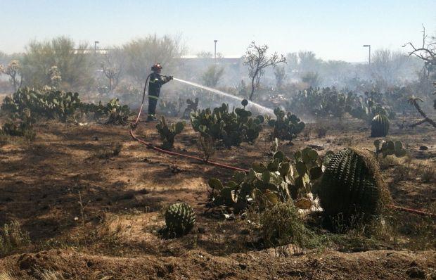 La Cholla Air Park brush fire
