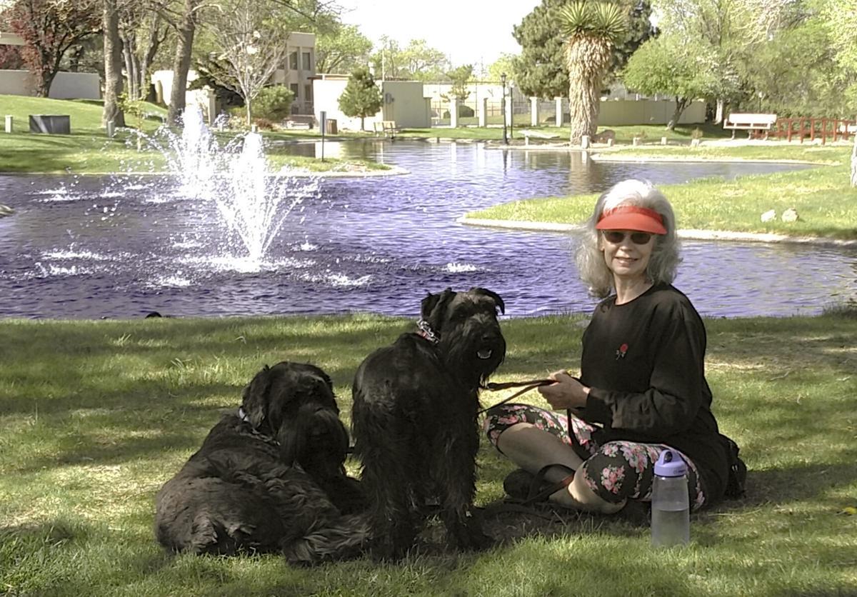 Pets-Home Euthanasia
