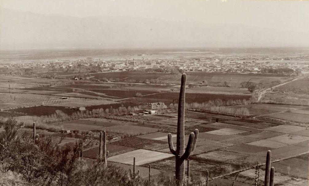 Street Smarts: Tucson Boulevard