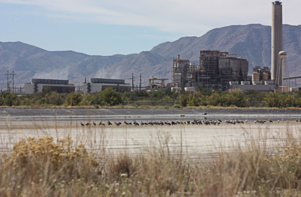 Southeast Arizona Electric Cooperative On The Hook For 7
