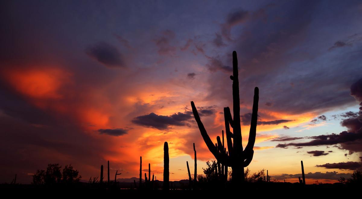 Tucson sunsets (copy)