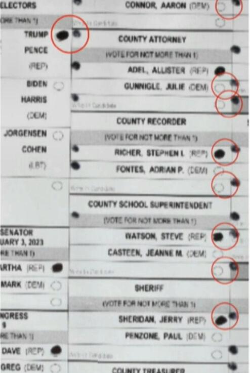 Arizona ballot audit