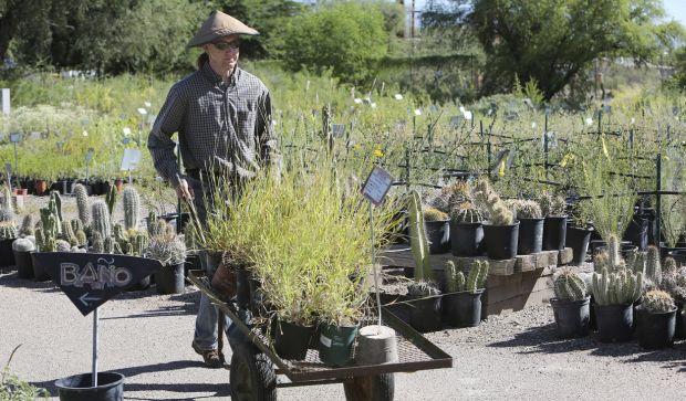 Desert Survivors holds fall plant sale
