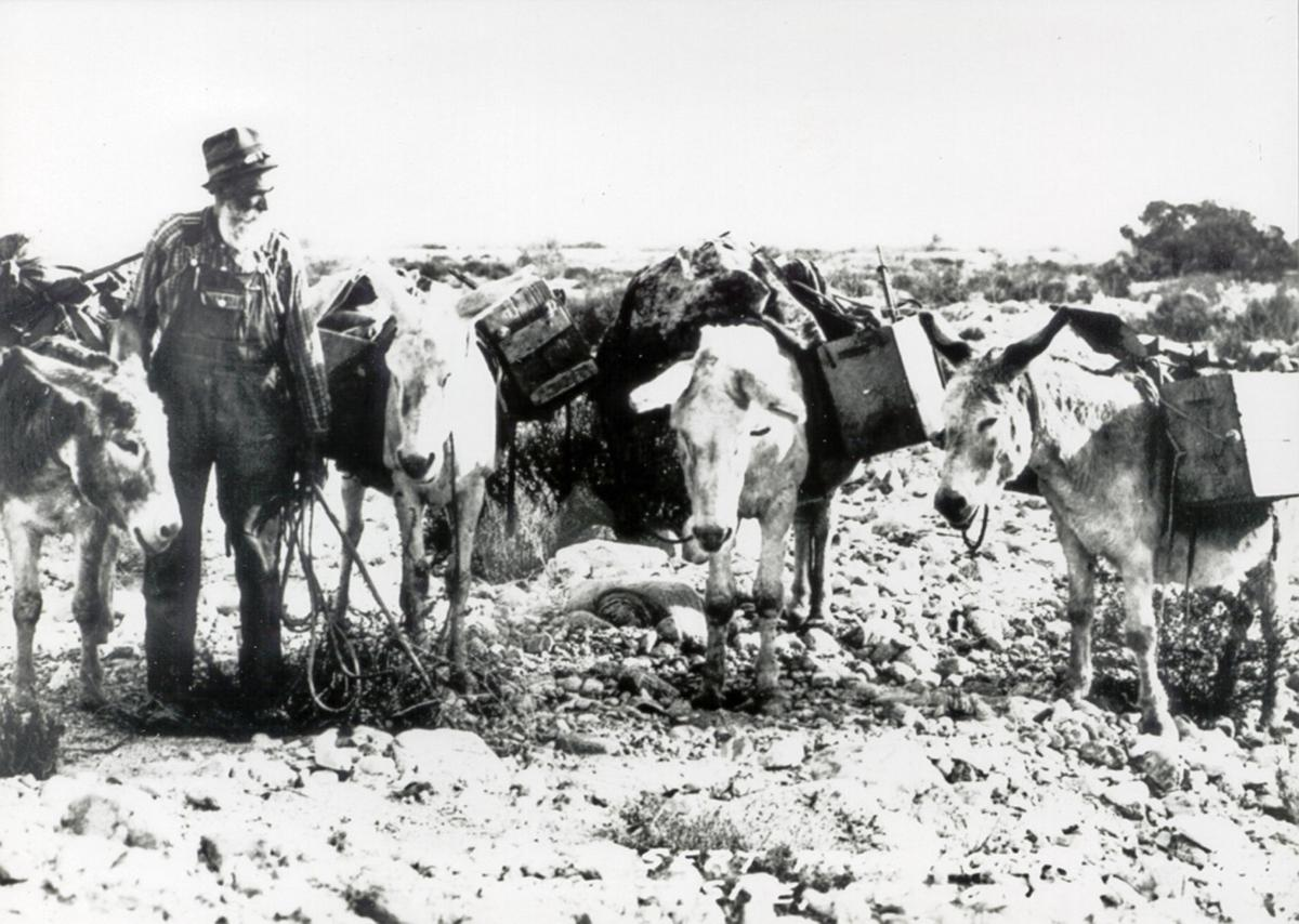 Mules and ore
