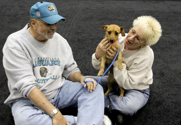 Employers offer pet insurance as perk