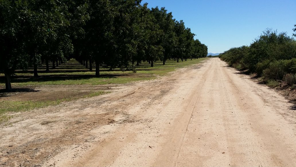 Cochise County Pecan Orchards Sold To Texas Company News About