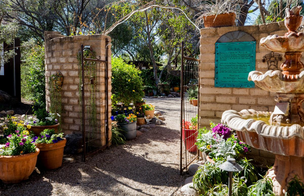 The Barrio Garden at Tucson Botanical Gardens
