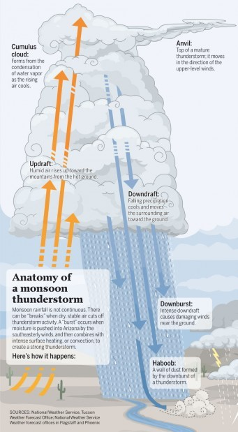 Anatomy of a monsoon thunderstorm