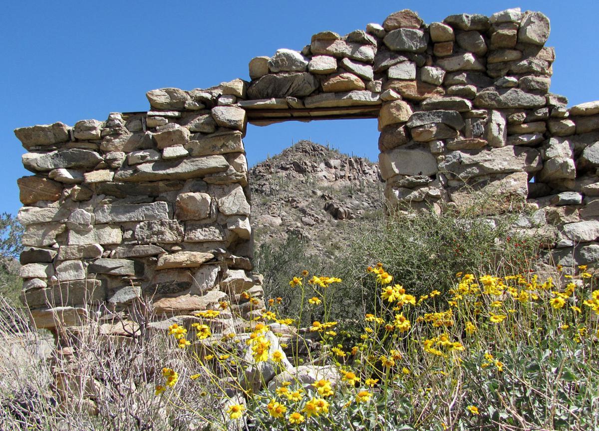 The Wild Burro Trail is a gateway into the Tortolita Mountains