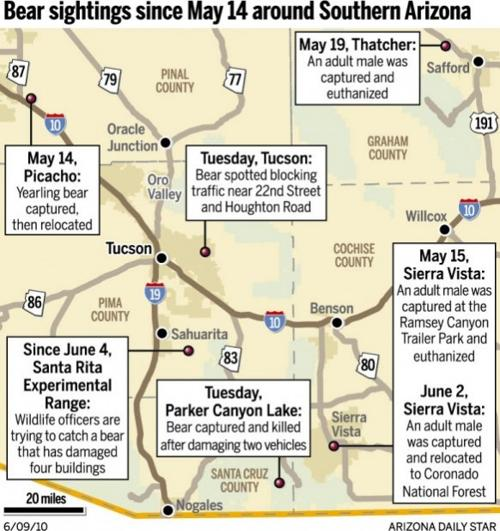 MAP: Bear sighting since May 14 around Southern Arizona | | tucson.com