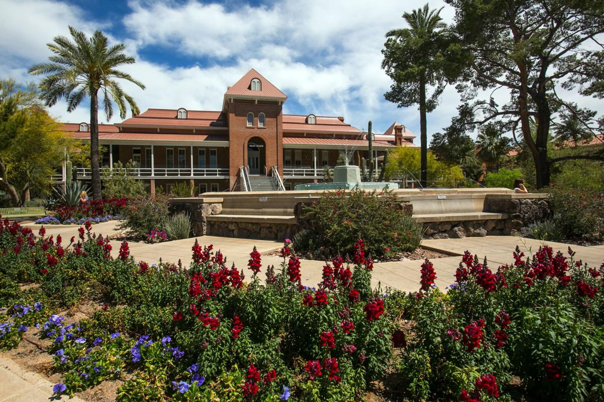 Public gardens and parks that show Sonoran Desert\'s beauty | Home ...
