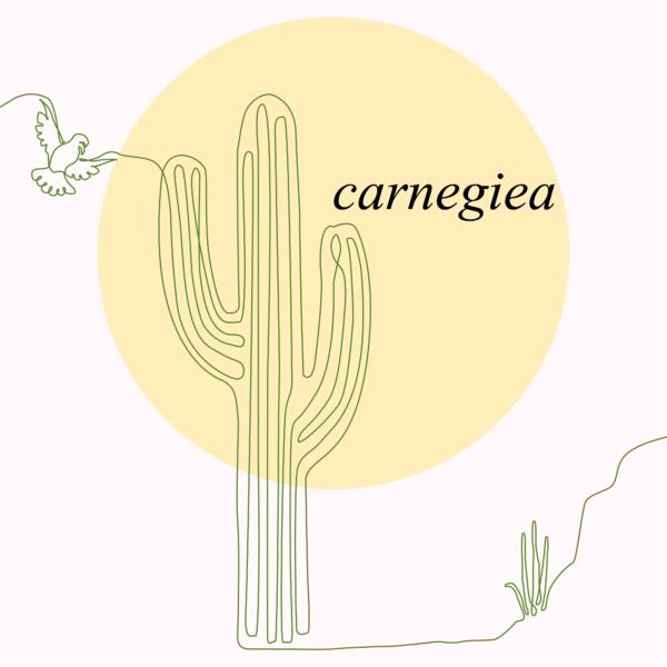 Carnegiea Magazine